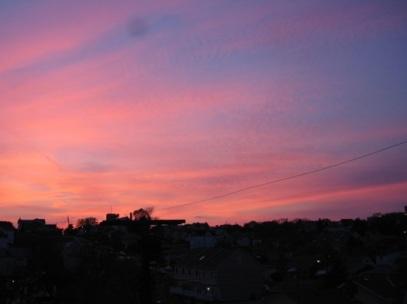 Albert St. Sunset